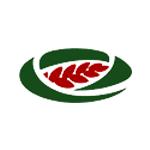 логотип «МА-МТС»